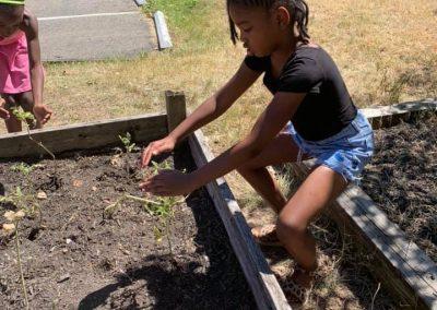 2019-gardening2